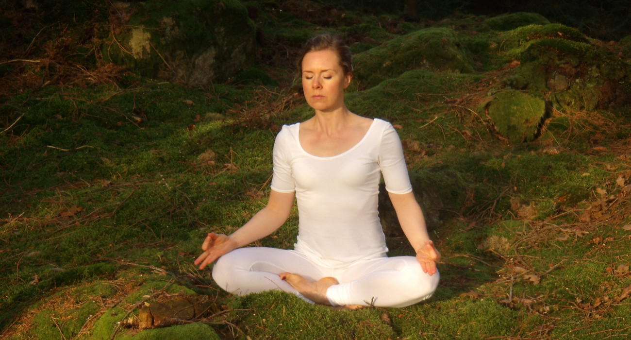 meditation in the forest 1300px